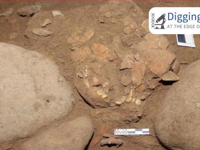 Il DNA di una donna cacciatrice-raccoglitrice, sepolta 7.000 anni fa in Indonesia, rivela la storia della popolazione del sud-est asiatico